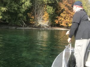 Hood Canal and Puget Sound Sea-Run Cutthroat Guide Rates